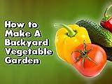 How to Make A Backyard Vegetable Garden