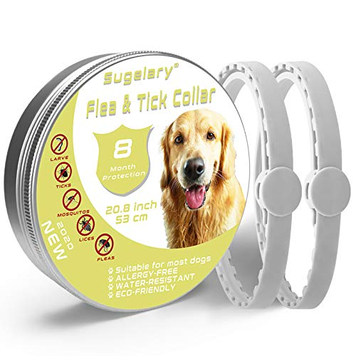 Sugelary Collar Antiparasitario para Perros - 8 Meses Prevención de Pulgas y Garrapatas - Tratamiento de Pulgas y Garrapatas- Estable, Duradero e Impermeable 2Pack