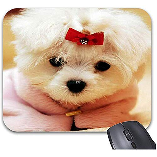Smity Cute Baby Animal Dog Mauspad 30 * 25 * 0,3 cm Mauspad Fashion Designed Mousepads Trendy Office Desktop Zubehör