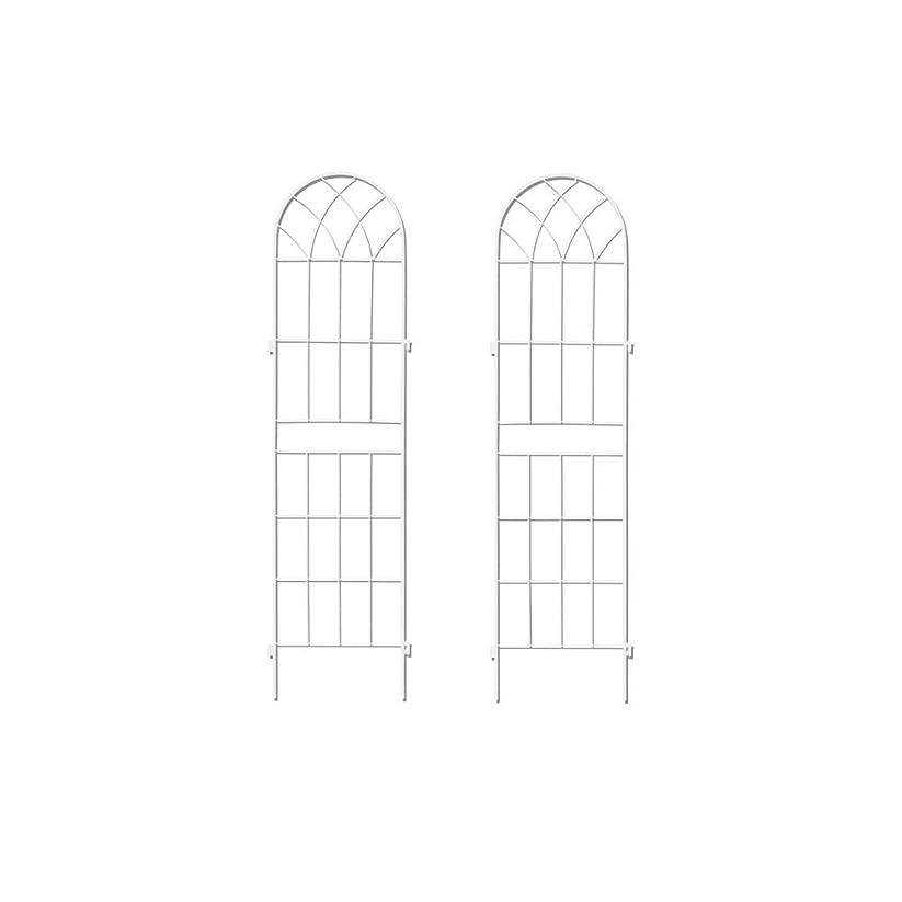 塗抹馬鹿げた雨のぼん家具 トレリス ガーデンフェンス ラティス グリーンカーテン ガーデニング 2枚セット ホワイト