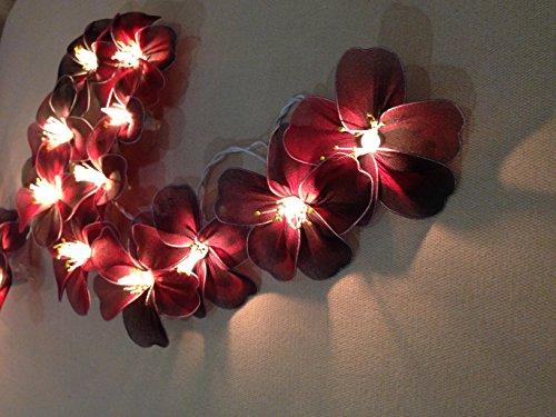 Hibiscus Flowers 20 Light Bulbs Lighting String Lantern for Velentine, Wedding, Patio, Garden, Garland, Indoor Outdoor Decoration, Christmas Tree Decoration