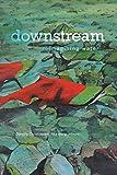 downstream: reimagining water (Environmental Humanities)