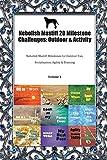 Nebolish Mastiff 20 Milestone Challenges: Outdoor & Activity Nebolish Mastiff Milestones for Outdoor Fun, Socialization, Agility & Training Volume 1