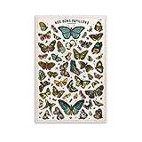 KFMD Vintage-Poster, Schmetterling, Enzyklopädie Insekten,
