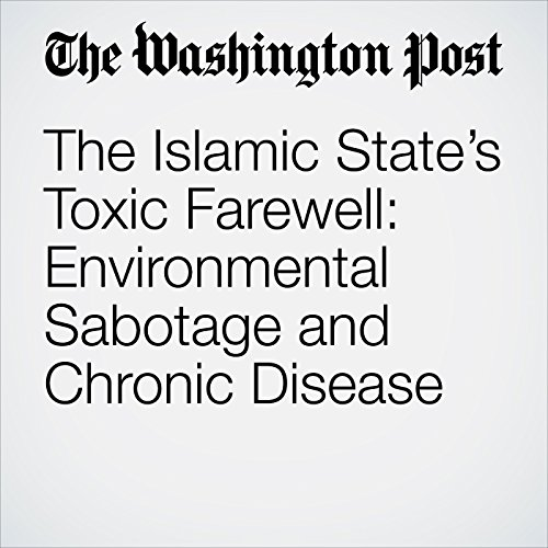 The Islamic State's Toxic Farewell: Environmental Sabotage and Chronic Disease copertina