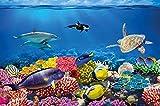 GREAT ART Fototapete – Aquarium – Wandbild Dekoration Farbenfrohe Unterwasserwelt Meeresbewohner Ozean Fische Delphin Korallen-Riff Clownfisch - Foto-Tapete Wandtapete (210x140 cm)