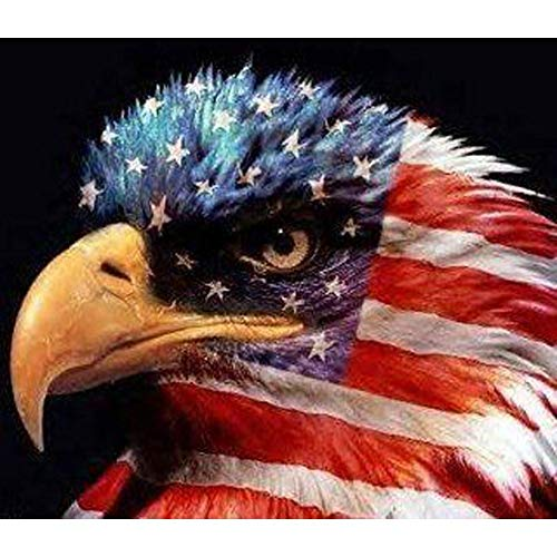 5D Diamond Painting Kits for Adults Diamond Painting by Number Kits Adults Full Frill Arts Craft Wall Decor Military American Flag with Eagle 15.7x11.8in 1 Pack by YIGANERJING