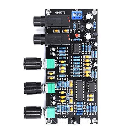 Qiang Dong PT2399 Digitalmikrofon Audio Verstärker-Brett Nachhall Reverb Verstärker NE5532 Vorverstärker Tone Vorstand