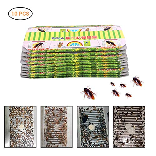 10 Stück Schabenfalle Kakerlakenfalle