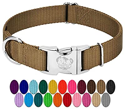Country Brook Design - Vibrant 25 Color Selection - Premium Nylon Dog Collar with Metal Buckle (Large, 1 Inch Wide, Coyote Tan)