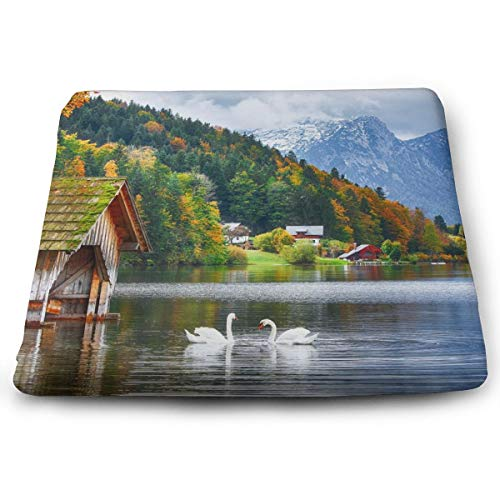 Sanghing Customized Alpine White Swans Play in Clear Lakes 1.18 X 15 X 13.7 in Cushion, Suitable for Home Office Dining Chair Cushion, Indoor and Outdoor Cushion.