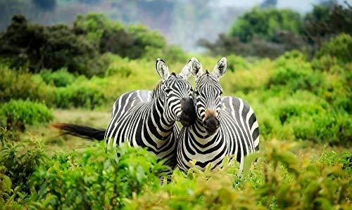 CYKEJISD Puzzle 1000 Pezzi Conservazione degli Animali Dell'Africa 3D Puzzle Fai da Te Kit Giocattolo di Legno Unico Regalo Home Decor 75X50Cm