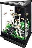 Aqueon Tri-Scape LED Aquarium Kit, 3 Gallon