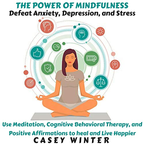 The Power of Mindfulness audiobook cover art