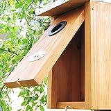 Zoom IMG-2 habau 2975 nido con tetto