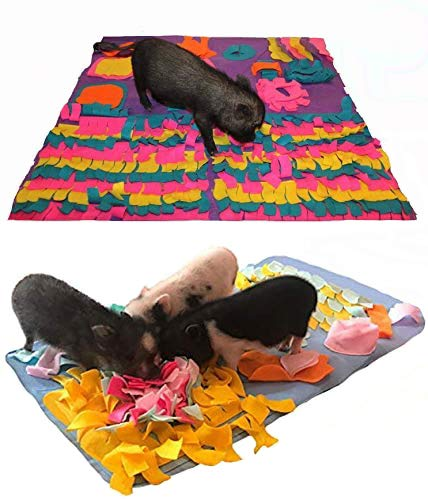 Activity Mat Combo Pack - My Secret to A Quiet Pig - Keep Your Pig Busy - A Bored Pig is A Vocal Pig
