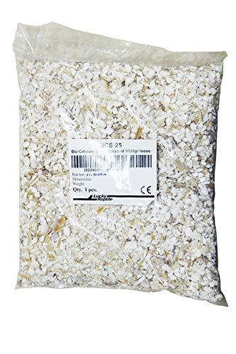 Lucky Reptile Sepia Crushed Calcium und Mineralien für Schildkröten und Vögel, 1 kg