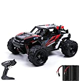 Remote Control Car, 36KM/H High Speed RC Truck, 1:18 4X4 All Terrain Off Road 2.4Ghz Remote Control Truck with 2 Rechargeable Batteries for All Adults & Kids Birthday Christmas