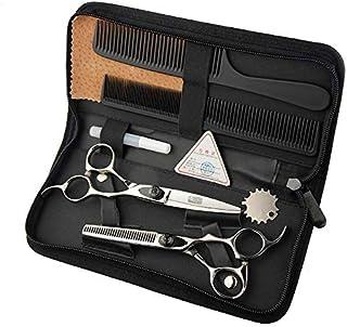 6インチ美容院プロのヘアカットフラットシザー+歯シザーセットハイエンドプロの美容ツールセット モデリングツール (色 : Silver)