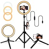 10' Selfie Ring Light with Adjustable Tripod Stand, 3 Modes 10 Brightness Levels with 120 LED Bulbs 5500K, LED Ring Light with Phone Holder for Vlogs, Live Stream, Phone,YouTube,Self-Portrait Shooting