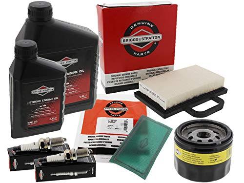 Briggs & Stratton, Intek V-Twin, kit di manutenzione, 18–25PS, a 2 cilindri Intek (etichetta in lingua italiana non garantita)