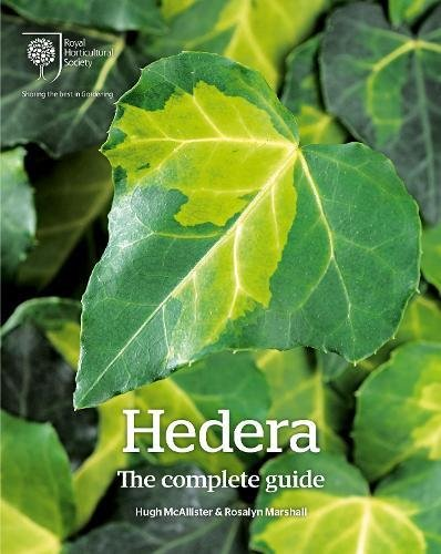 Hedera: The Complete Guide