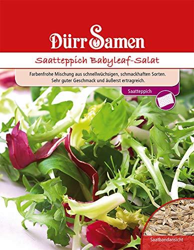 Dürr Samen 4197 Babyleaf-Salat Saatteppich (Babyleaf-Salatsamen)