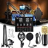 Paquete de micrófono de condensador V8, juego de micrófono, con soporte de choque, filtro pop para grabación y transmisión, brazo de tijera de suspensión de micrófono ajustable, soporte de choque de