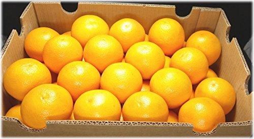 輸入 オレンジ 72玉〜88玉