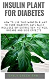 INSULIN PLANT FOR DIABETES: How to use this wonder plant to cure diabetes naturally includes DIY extraction method, dosage and side effects
