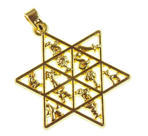 Colgante de estrella de David, sello de Salomón, símbolo de la conexión entre hombre y dios, chapado en oro de 18 quilates, 4 cm de largo, envío en 24 horas.