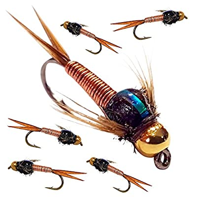BH Copper John Fly Fishing Nymph Trout Fly Assortment