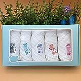 xingxing Pañuelo para bebé para bebé recién nacido, babero para niños, pañuelo, bufanda para la cara, 5 unidades (color: 30 x 30 cm blanco)
