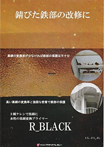 ブラザー・オブ・レガシー『黒錆変換剤R-BLACK』