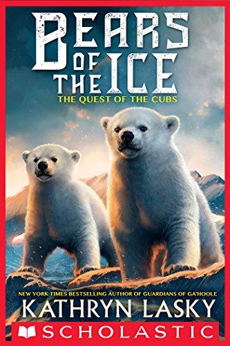 polar bear expedition - 8