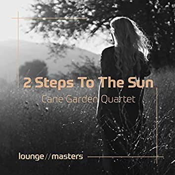 2 Steps To The Sun