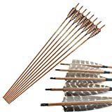 Pinals Archery 400 500 600 Spine Arrows for Recurve Traditional Longbow Compound Bows Hunting Targets Carbon Shaft 12PCS(Brown2 400)