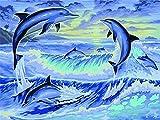 Pintura de diamante delfín bordado de diamantes imagen de animal mosaico de diamantes de imitación decoración del hogar pintura de diamantes A9 60x80cm