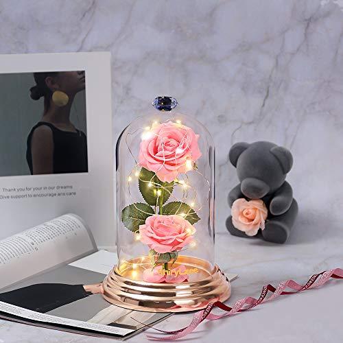 shirylzee Ewige Rose Blume Rose im Glas, Die Schöne und das Biest Rose in Glaskuppel Künstlich mit LED-Licht für Party Hochzeit Dekor Valentinstag Muttertag Jubiläum Hochzeitsgeschenk Kit (Rosa)