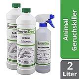 BactoDes Animal Tier Geruchsentferner Konzentrat - 2 x 1 Liter