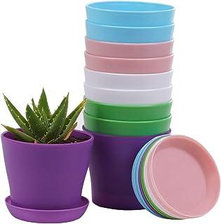 10 Pcs Plastic Planters Indoor Flower Plant Pots, Mini Flower Seedlings Nursery Pot/Planter/Flower Pot with Pallet, Modern Decorative Gardening Containers