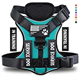 Demigreat Service Dog Harness, No-Pull...
