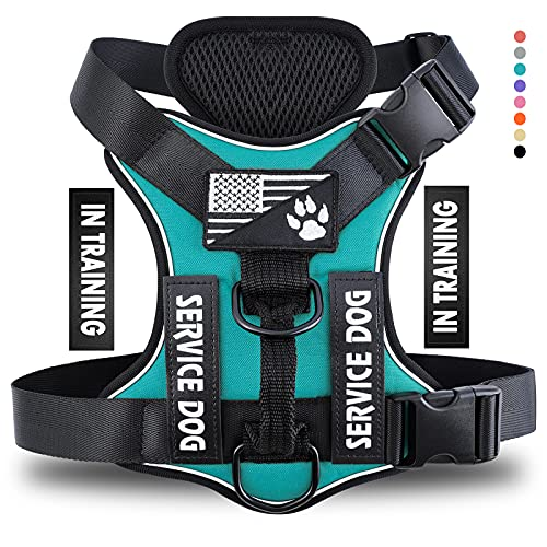 Demigreat Service Dog Harness, No-Pull Reflective Dog Vest Harness with 5 PCS Patches, Adjustable Soft Oxford Pet Harness, Inner Layer Mesh, No-Choke Easy to Control for Small Medium Large Dogs