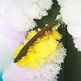 MAGIC TREE Wachsen Sie Ihre Kristall Blumen - 8