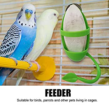 applyvt Mangeoire pour Oiseaux en Cage, Mangeoire Perroquet Cage Interieur, Support Os De Seiche Oiseaux, Seche pour Perruche pour La Peau De Tigre, Pivoine, Xuanfeng, Perroquet