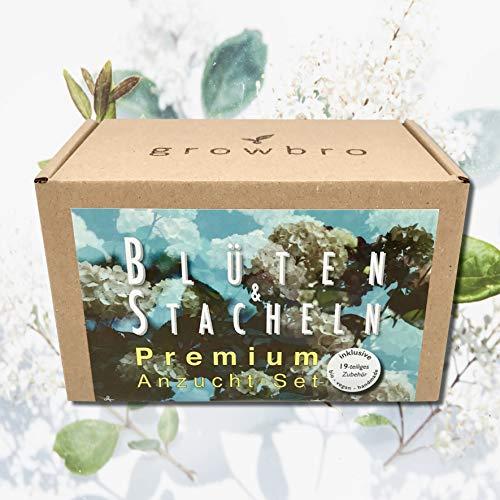 growbro Blüten & Stacheln - 19-teiliges Premium Anzuchtset, Züchte Deine eigenen Bros (Kaktus, Mimose und Vergissmeinnicht), Bio, vegan, Handmade, personalisierte Geschenke für Männer & Frauen