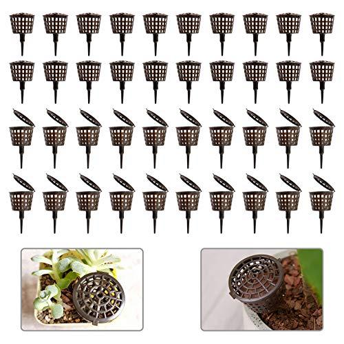 YBB 50Pcs Fertilizer Mesh Baskets with Lids, 1.2 x 1.6 Inch Planting Nutrition Cups Nursery Pots for Succulent, Orchid, Bonsai, Potted Plant