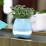 Great Houseware Macetas de música con altavoz Bluetooth con luz LED de noche colorida para decoración del hogar y la oficina (azul)