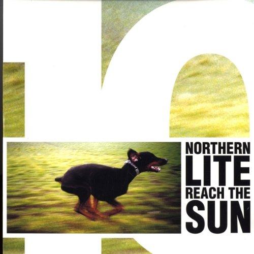 Reach the Sun [Vinyl Single]