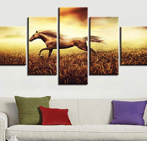 PrintWUHUA Cuadros para Dormitorios Modernos Animal Caballo Delgado Cuadros Decoracion Salon Modernos 5 Partes